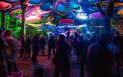 """Interview with """"the psychedelic way"""" London"""