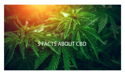 5 Facts about CBD
